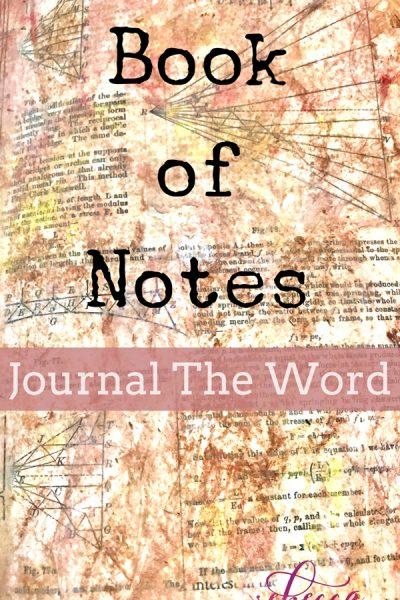 Bible Journaling Book of Notes Day 3 PIN